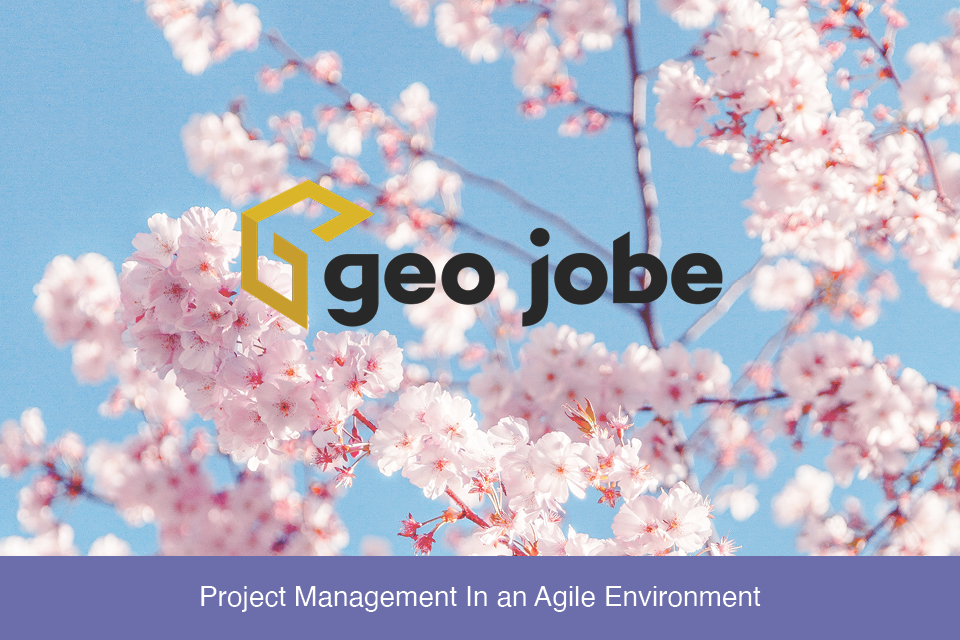 Project Management In an Agile Environment