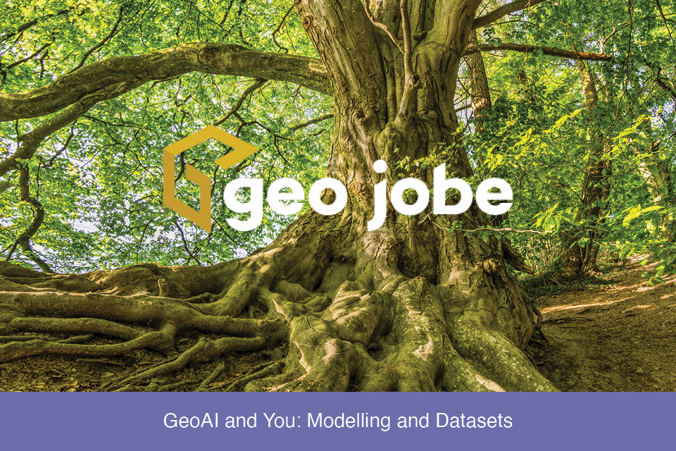 GeoAI and You: Modelling and Datasets